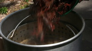Stock Video Footage of Boiling Crawfish