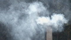 Smoking flue and trees Stock Footage