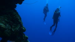 Scuba Divers swimming on a coral wall Stock Footage