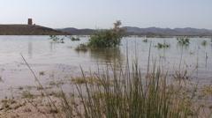 Mansor Dahbi lake Stock Footage