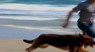 Young Man and Dog Run On Beach Stock Footage