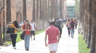 Stock Video Footage of Arizona State University -  Palm Walk Telephoto Shot