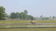 Stock Video Footage of Farming, Nepal