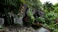 Beautiful Paradise Garden, Wat Saket in Bangkok, Thailand, Golden Mountain Footage