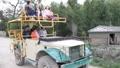 safari tour 6989 Footage