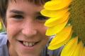Boy Beside Sunflower Footage