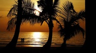 Healthy young couple getting into calm ocean on exotic tropical beach at sunset Stock Footage