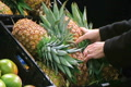 Woman Selects Pineapple Footage