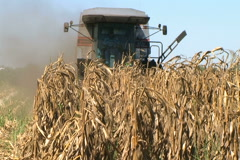 Combine Harvesting Corn 06 Stock Footage