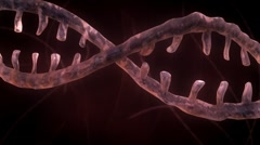 DNA Strand - Red Version 2 - stock footage