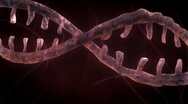 Stock Video Footage of DNA Strand - Red Version 2