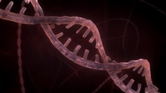 DNA Strand - Red Version 1 - stock footage