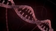 Stock Video Footage of DNA Strand - Red Version 1