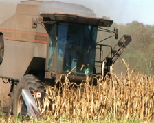 Combine Harvesting Corn 02 Stock Footage