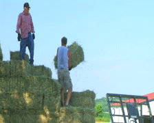 Farmers Loading Hay Stock Footage
