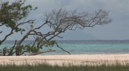 Beach Aruba island in the caribbean Stock Footage