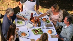 Stock Video Footage of Family clinking glasses during a meal in garden