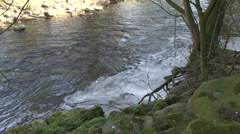 Foam collects on river. Stock Footage