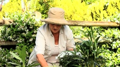 Woman potting plants in the garden Stock Footage