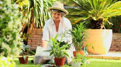 Mature woman potting plants in the garden Stock Footage