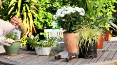 Retired woman potting plants Stock Footage