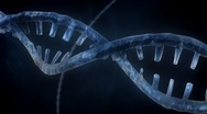 Stock Video Footage of DNA Strand - Blue Version 3
