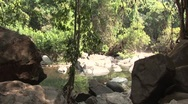 Stock Video Footage of The jungle and then sky, paradise