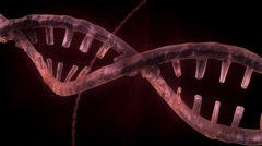DNA Strand - Red Version 3 - stock footage