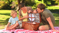 Family preparing a picnic Stock Footage