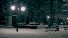 Man in a park (winter) Stock Footage