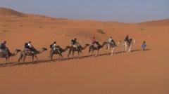 Camel ride in Sahara, Morocco - stock footage
