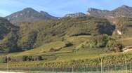Vineyards in the Alto-Adige alps Stock Footage