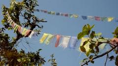 Nepali prayer flags Stock Footage