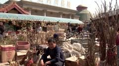 Bird market in Beijing Stock Footage