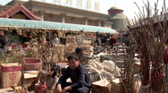 Stock Video Footage of Bird market in Beijing