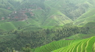 Stock Video Footage of Dramatic timelapse over beautiful rice fields in China