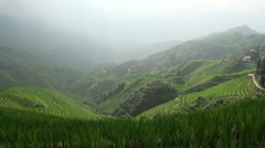 Dramatic view of rice fields in China Stock Footage