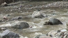 Stock Video Footage of Ourika river