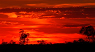 Australian fire sunset Stock Footage