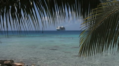 A ship and palm frond at Rangiroa Stock Footage