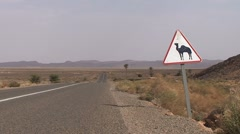 Beware of camels crossing - stock footage
