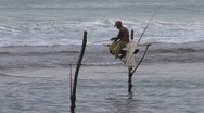 Stock Video Footage of Sri Lanka, pole fishers