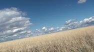 Rural Field Technology Stock Footage
