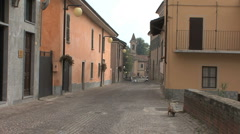 Italy Barbaresco street with dog Stock Footage
