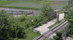 DMZ Panmunjon North Korean border rice fields and train passing by Stock Footage
