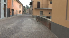 Italy Barbaresco street with dog and people Stock Footage