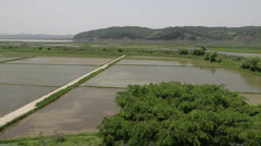 DMZ Panmunjon North Korean border  rice fields Stock Footage