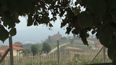 Italy Barolo looking down rows of vines Stock Footage