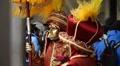 Venice Carnival Footage