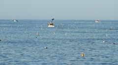 Lobster Boats and Buoys in Maine - stock footage